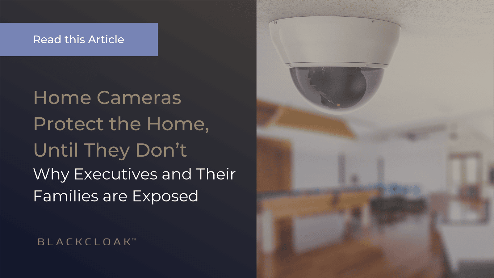 Home Cameras Protect the Home Until They Don't